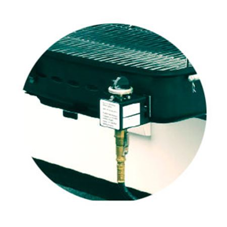 Picture for category Grills & Accessories