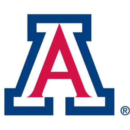 Picture of PowerDecal College Series Arizona Powerdecal PWR460101 03-1571