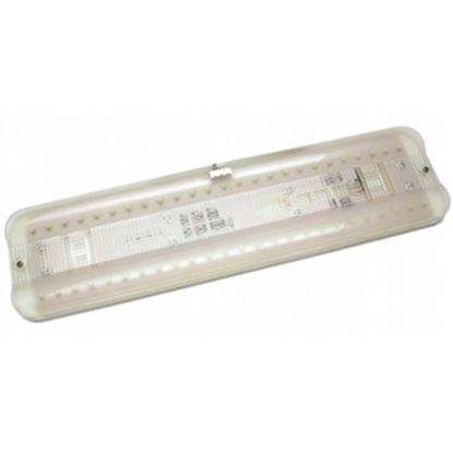 Picture of Diamond Group  Standard White 50 LED Interior Light DG52529VP 18-2240